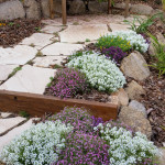 Garden Seating Area with Sandstone Crazy Pave and Ironbark Steps