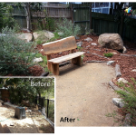 Native Garden Before and After